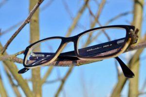 Hornbrillen Naturoptik